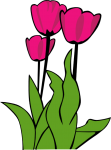 Precious Plant Labels